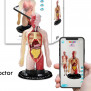 https://www.eduplanuae.com/ar-human-torso-professional-model